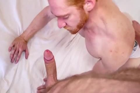 Ginger boy likes Being plowed