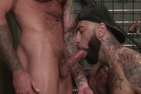 Muscle Bear butthole And Facial