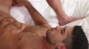 Thoroughbred - Diego Sans, Nate Grimes anal Hook up