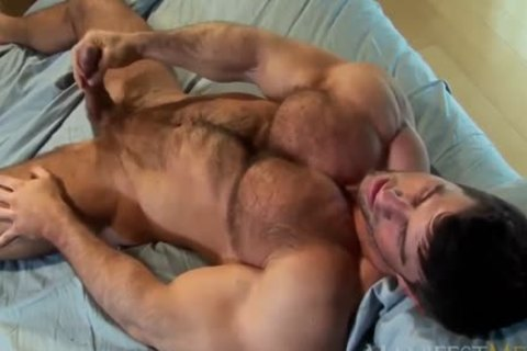 Zeb Atlas bushy Muscle animal